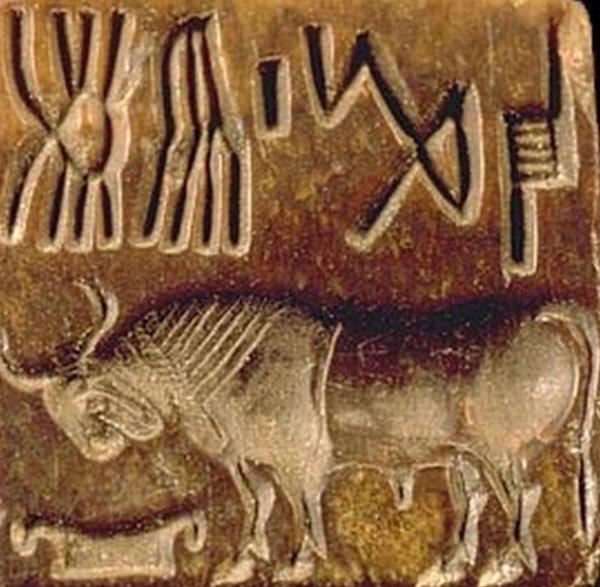 Máy tính khám phá bí mật của hệ thống chữ Indus cổ