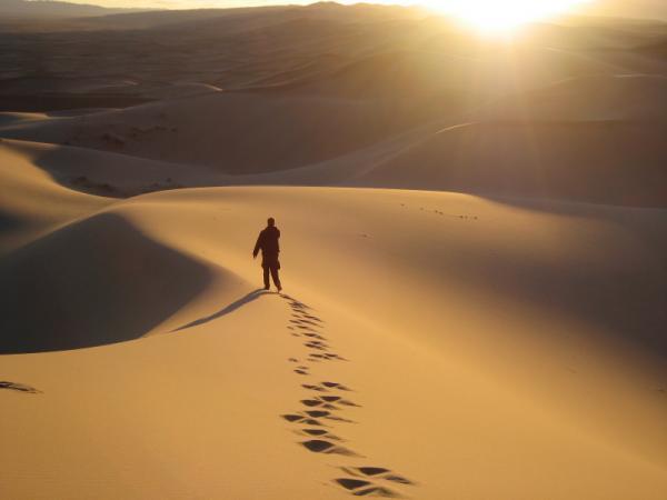 Con người đi thành vòng tròn khi không có vật chỉ dẫn phương hướng