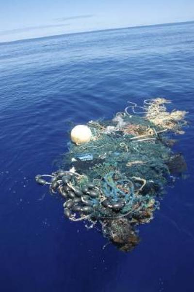 Băng rác khổng lồ Thái Bình Dương