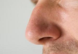 Cạnh tranh khứu giác: hai lỗ mũi luân phiên xử lí hai mùi khác nhau