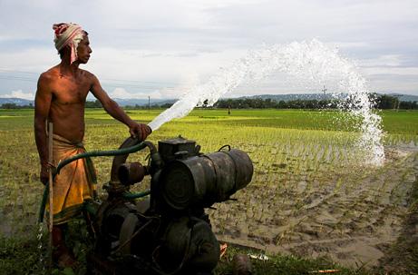 Chế độ ăn thay đổi tăng gánh nặng nhu cầu nước ngọt tại châu Á