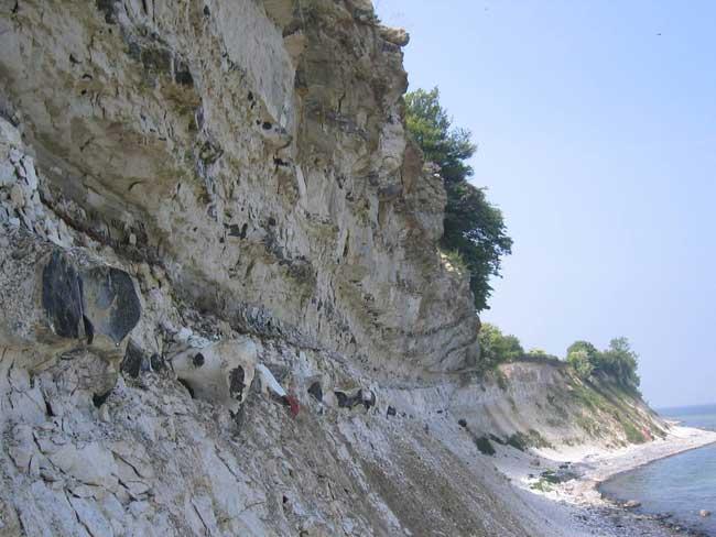 Thiên thạch làm khủng long tuyệt chủng chỉ ảnh hưởng tới tảo trong thời gian ngắn
