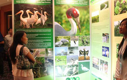 Điểm nóng thế giới đa dạng sinh học: ASEAN