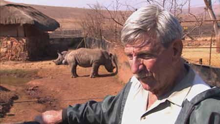 Nam Phi tẩm độc vào sừng tê giác