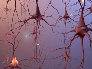 Cách mới chẩn đoán bệnh thoái hóa thần kinh