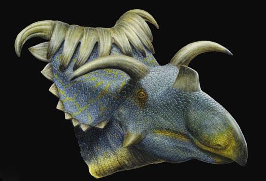 Phát hiện hóa thạch 2 loài khủng long có sừng mới