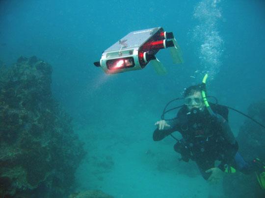 Máy tính bảng điều khiển robot rái cá