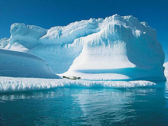 NOAA: Sự biến đổi khí hậu tại Bắc Cực là tất yếu