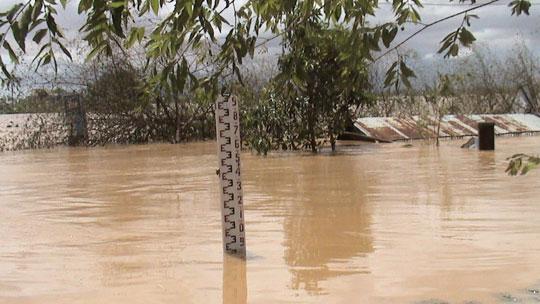 Chủ tịch nước chỉ đạo khắc phục lũ lụt tại Phú Yên