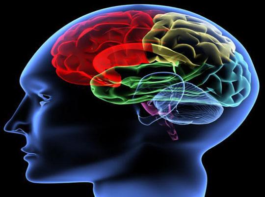 Mỹ nghiên cứu thiết bị kết nối não với máy móc
