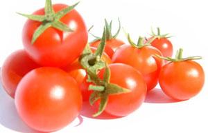 Bỉ nuôi trồng giống cà chua mới bằng cải tạo gen