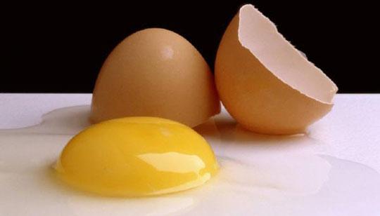 Ăn quá nhiều cholesterol có thể gây tổn hại não
