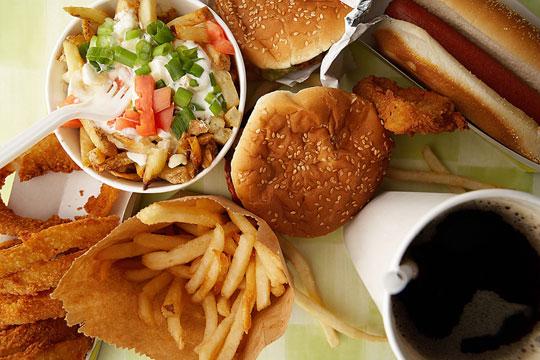 Chuột cũng từ chối thức ăn nhanh vì kém dinh dưỡng