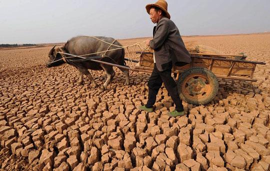 Khô hạn lan rộng gây thiệt hại nặng ở Trung Quốc