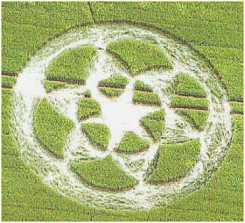 Những vòng tròn kỳ lạ trên cánh đồng