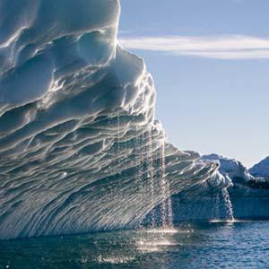 Tình trạng ấm lên toàn cầu gây hậu quả khủng khiếp