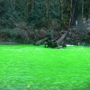 Dòng sông biến sắc xanh sáng kỳ lạ