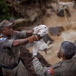 Brazil trong thảm họa thiên nhiên lịch sử