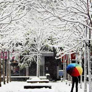 Mưa tuyết dày đặc tàn phá Tây Nam Trung Quốc