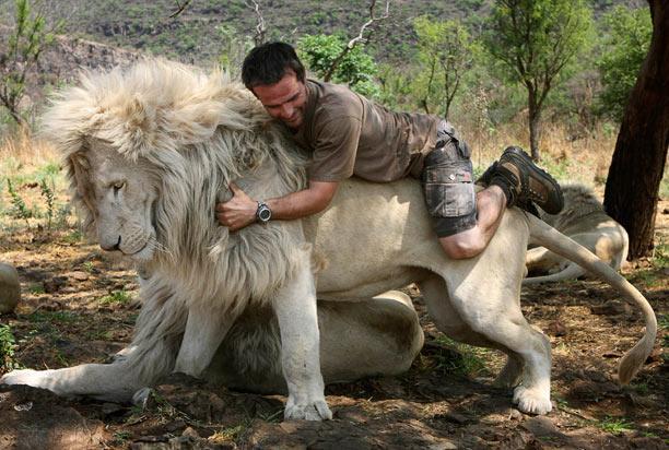 Kevin Richardson - Người bạn thân thiết của sư tử châu Phi