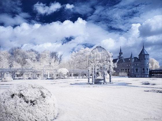 Ảnh bức tranh mùa đông tuyệt đẹp
