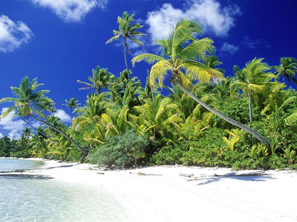 Động đất mạnh 6,6 độ richter ở quần đảo Solomons