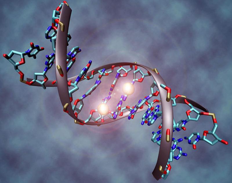 Phát triển máy giải mã ADN với giá chỉ 1.000 USD