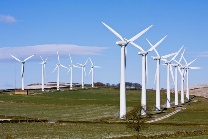 Hợp tác về tăng trưởng xanh vì phát triển bền vững