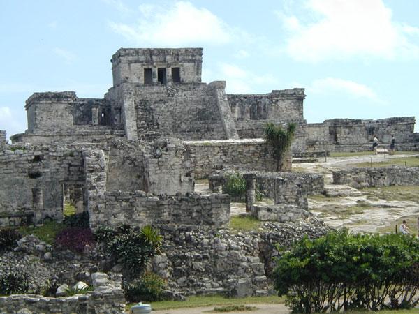 Nền văn minh Maya sụp đổ do mất rừng?