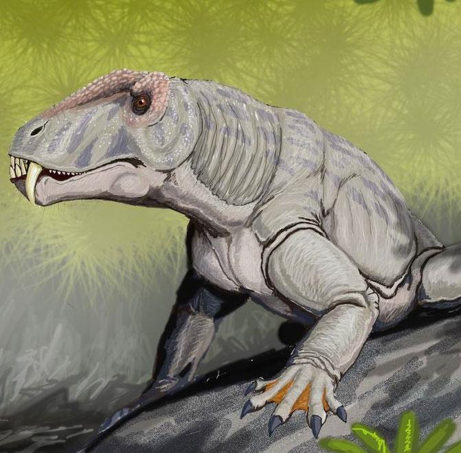 Phát hiện hóa thạch loài săn mồi cổ nhất Nam Mỹ