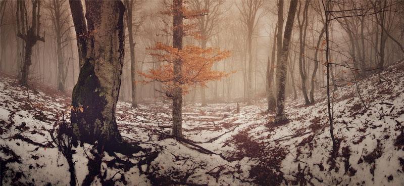 Mùa đông đẹp kỳ ảo trên bán đảo Crimea (P1)