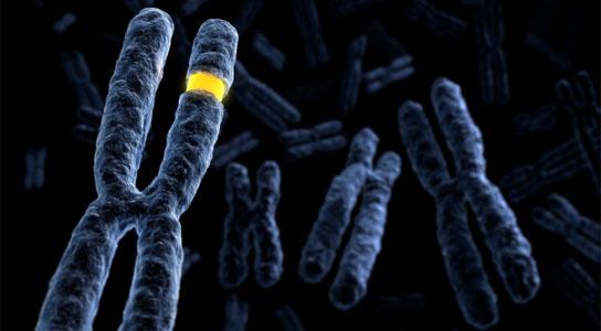 Khu vực mới trên gene di truyền giúp quyết định cân nặng trẻ sơ sinh.