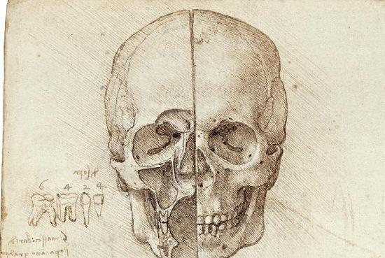 """Nhiệm vụ """"lấy hộp sọ"""" được Leonardo dành riêng một ví trí dễ thấy trong trang sổ tay"""