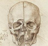 Sổ tay ghi nhớ của Leonardo Da Vinci