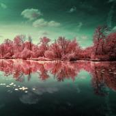Ảnh: Thiên nhiên nước Pháp dưới ống kính hồng ngoại