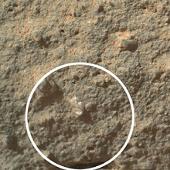 Phát hiện chấn động: Hoa nở trên sao Hỏa?