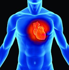 Con người có thể điều khiển được trái tim