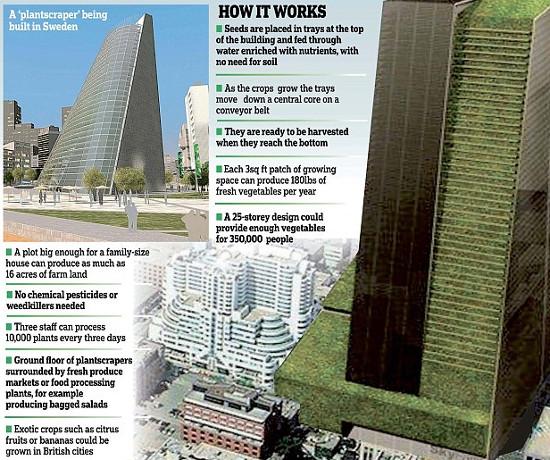 """Phối cảnh một """"cao ốc cây trồng"""" cao 54 mét tại thành phố Linkoping, Thụy Điển."""