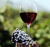 Rượu vang cũng có tác dụng như doping