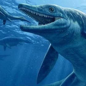 Phát hiện loài quái thú biển cả mới