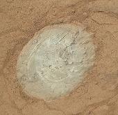 """""""Tò mò"""" làm sạch bụi trên đá sao Hỏa"""