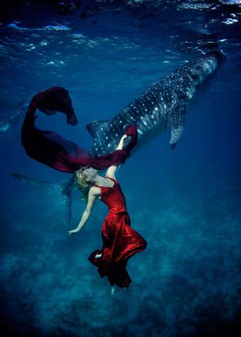Cá nhám voi chủ yếu sống cô độc và ít khi thấy bơi thành đàn. Người ta tin rằng chúng sống di trú, nhưng các chuyên gia vẫn không rõ chúng có thể di cư xa bao nhiêu.
