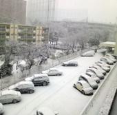 Nguyên nhân hiện tượng tuyết rơi kỷ lục ở Nhật Bản
