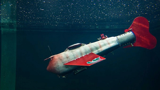 Robot cá Grace được chế tạo bởi nhà khoa học Xiaobo  Tan thuộc Đại học bang Michigan, Mỹ