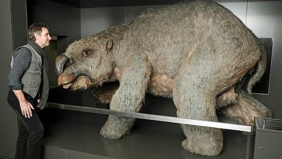 """Tổ tiên của gấu túi thật sự """"xấu xí""""."""