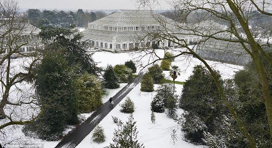Tuyết phủ trắng khắp nơi
