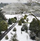 """Tuyết """"chôn vùi"""" London và Paris"""