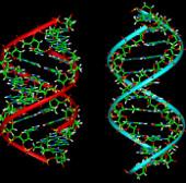 Đột phá mới biến ADN trở thành ngân hàng dữ liệu