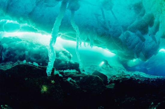 Vùng biển băng của Bắc Cực và Nam Cực