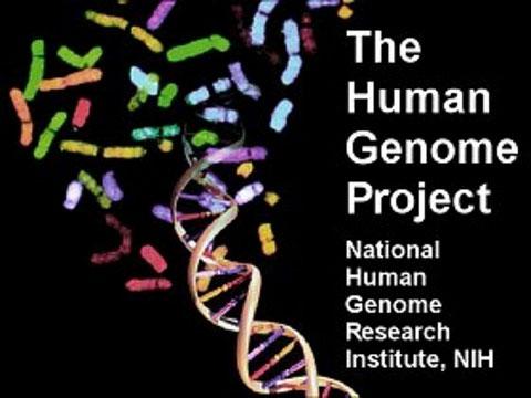 Nhìn lại 10 năm công bố bản đồ gene người